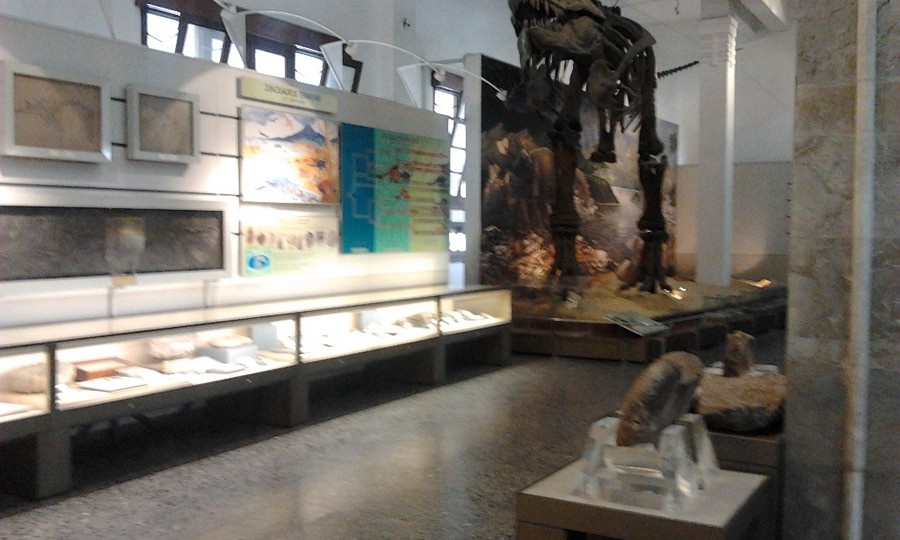 Belajar Sejarah di Museum Geologi Bandung